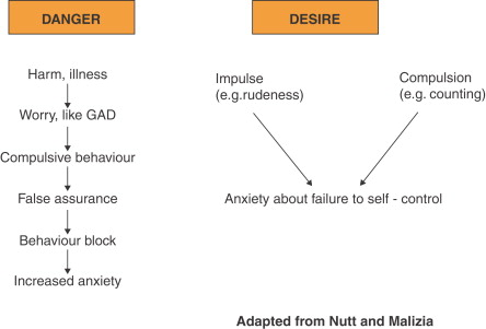 Chapter 5 1 Phenomenology of anxiety disorders - ScienceDirect