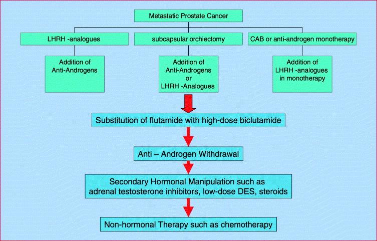 cancer hormonal manipulation viermi spitalul de arsi