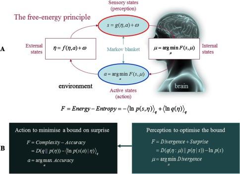 Answering Schrödinger's question: A free-energy formulation