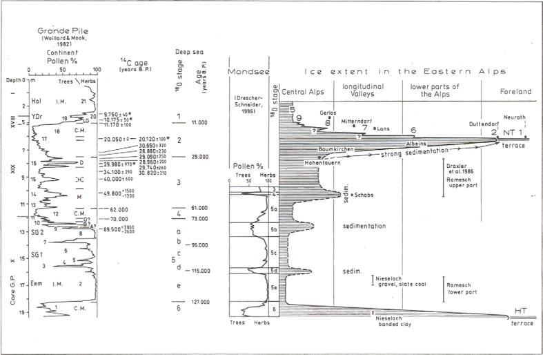 Charmant 1997 Tx 175 Enduro Schaltplan Galerie - Der Schaltplan ...