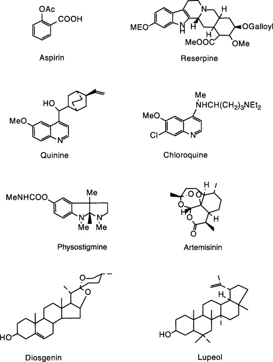 Drug Discovery Through Ethnobotany In Nigeria Some Results