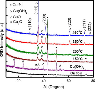 Template synthesis of copper oxide nanowires for