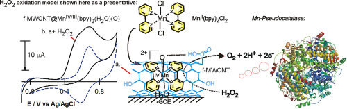 In Situ Electrochemical Immobilization Of Mnbpy2h2o22 Complex