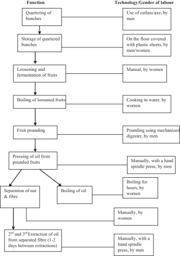 Processing Practices Of Small Scale Palm Oil Producers In The