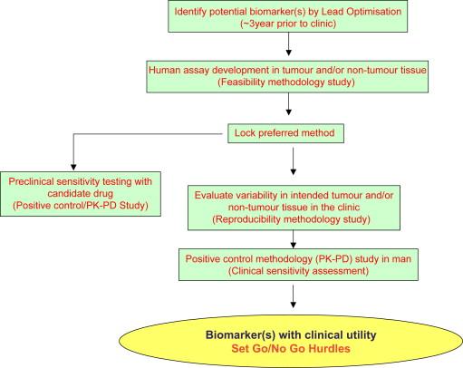 Fda oncology drug candidate human equivalent