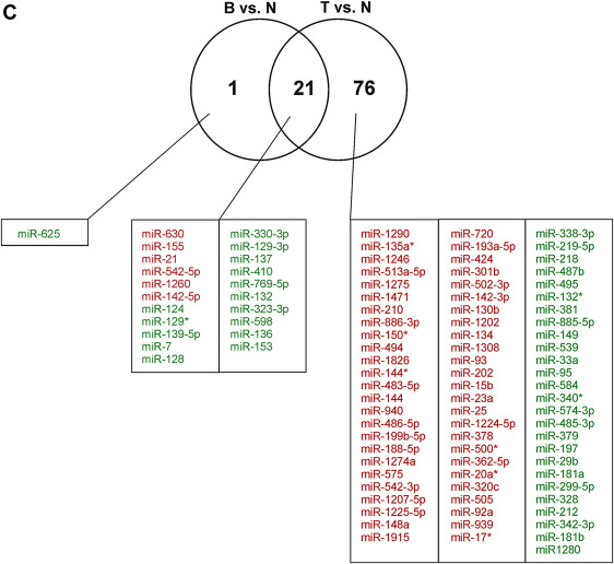 Comprehensive analysis of microRNA expression profile in malignant