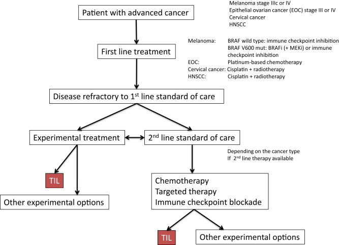 Tumor Infiltrating Lymphocytes For The Treatment Of Metastatic Cancer Sciencedirect