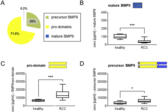 Impact of selective anti-BMP9 treatment on tumor cells and tumor