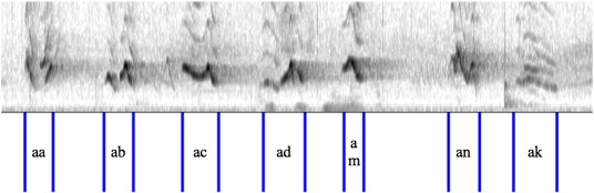 Bird-DB: A database for annotated bird song sequences - ScienceDirect