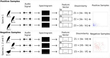 Bird species identification using spectrogram and dissimilarity