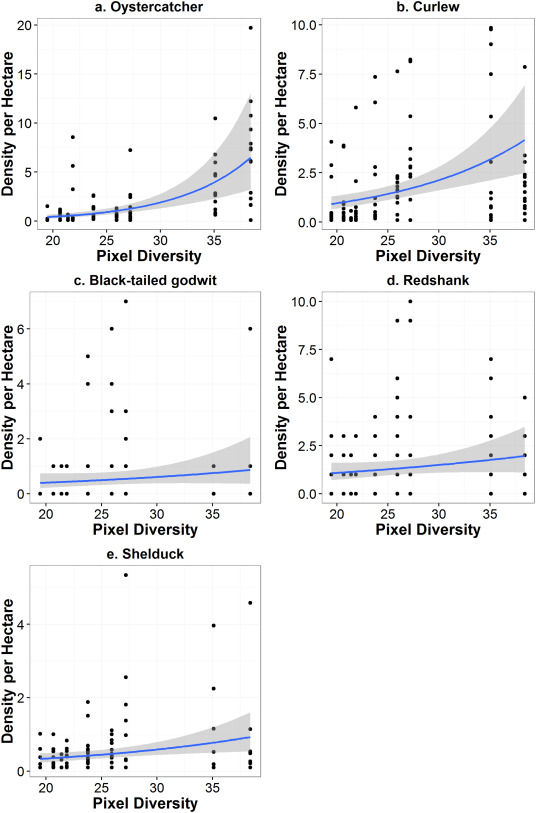 Using remote sensing to quantify fishing effort and predict