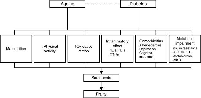 9 procesos clave de cuidado tipo diabetes
