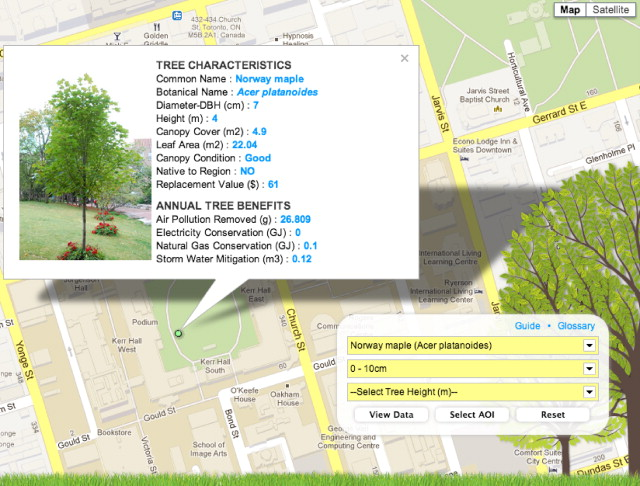 Interactive mapping of urban tree benefits using Google