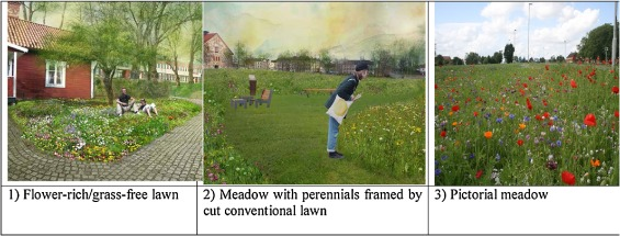 The lawn as a social and cultural phenomenon in Sweden ScienceDirect