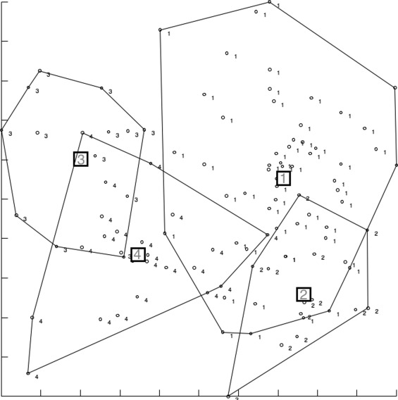 Wing Geometry Of Phlebotomus Stantoni And Sergentomyia Hodgsoni From