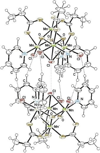Quantum Dynamics In Molecular Nanomagnets