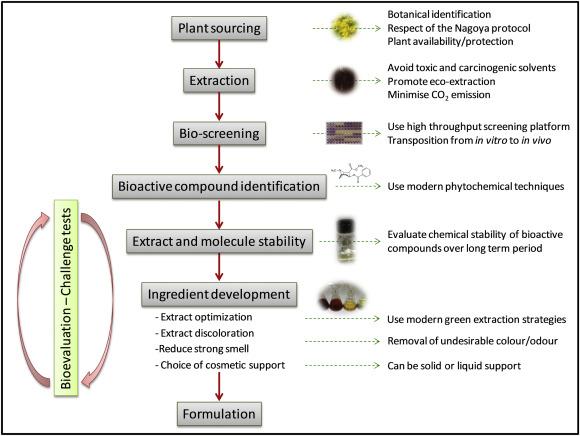 Development of a natural ingredient – Natural preservative