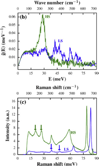 Spectroscopic techniques to characterize the spin state: Vibrational