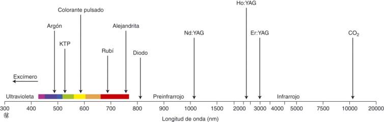 Glándula prostática de 650 cc