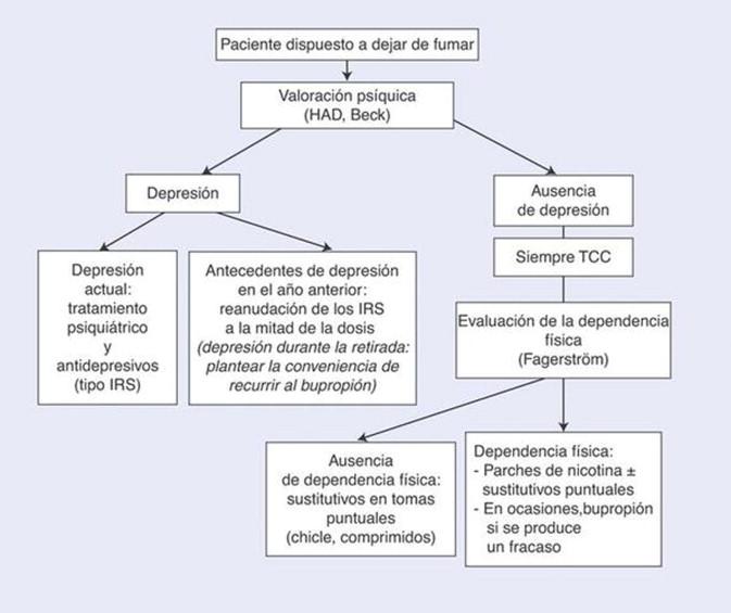 Insuficiencia respiratoria crónica: papel del médico general en el ...