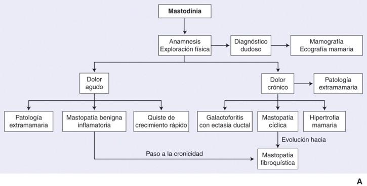 Que es mastodinia en medicina