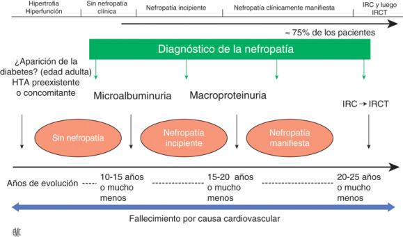 nefropatía manifiesta diabetes mellitus