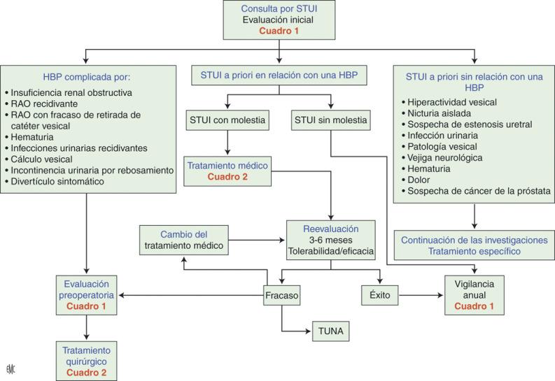 hematuria prostata tratamiento
