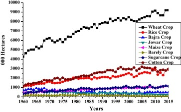 Fertilizer consumption, water availability and credit