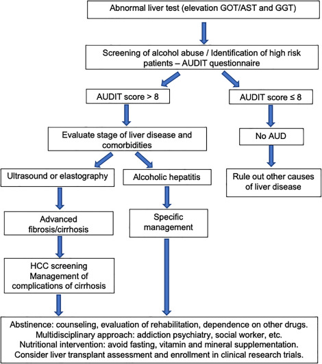 Alcohol-related liver disease: Clinical practice guidelines