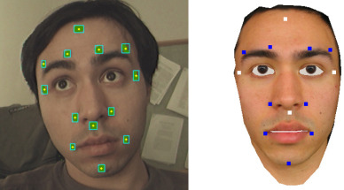A low cost framework for real-time marker based 3-D human expression