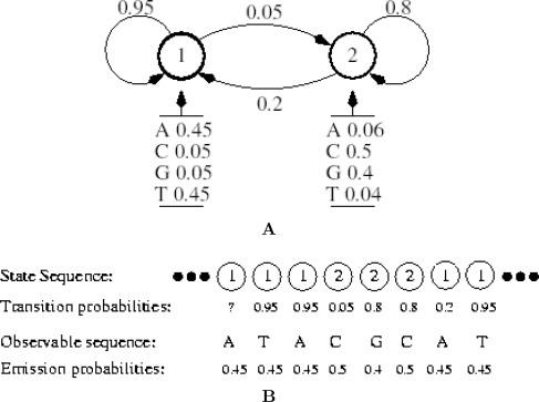 Recent Applications of Hidden Markov Models in Computational