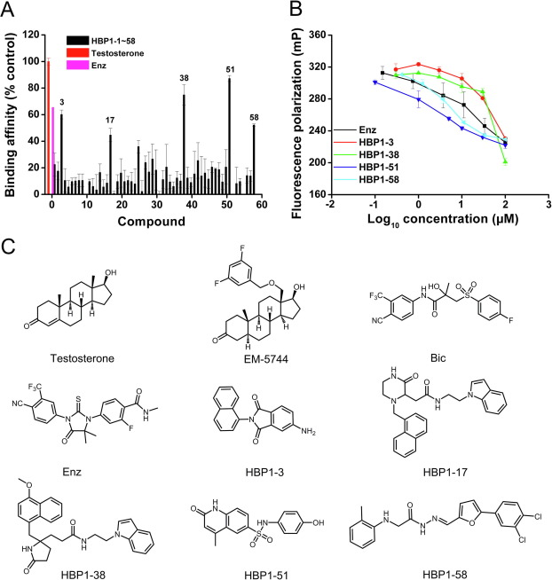 Discovery of Novel Androgen Receptor Ligands by Structure