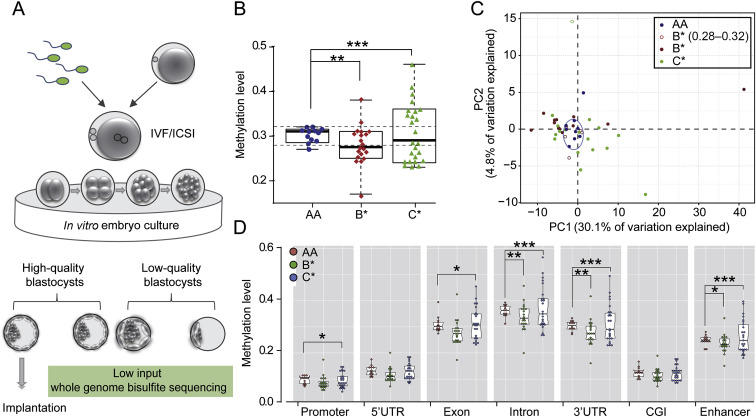 Genome wide abnormal DNA methylome of human blastocyst in
