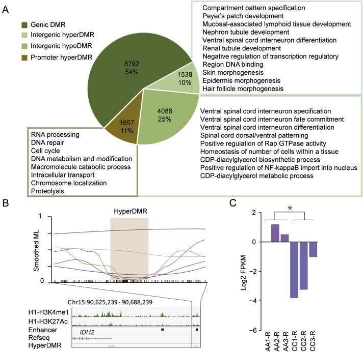 Genome Wide Abnormal Dna Methylome Of Human Blastocyst In Assisted