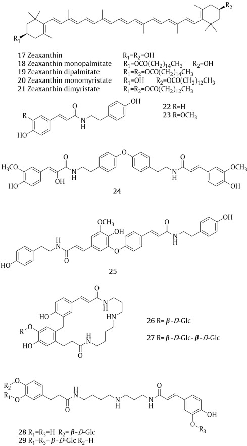 Research and application of Lycii Fructus in medicinal field