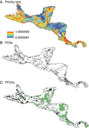 Supporting Underrepresented Forests In Mesoamerica Sciencedirect