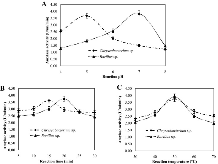 effect of temperature on amylase activity lab report