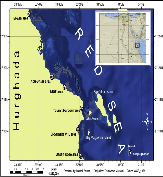 Assessment And Comparison Of Heavymetal Concentrations In Marine - Map of egypt red sea area