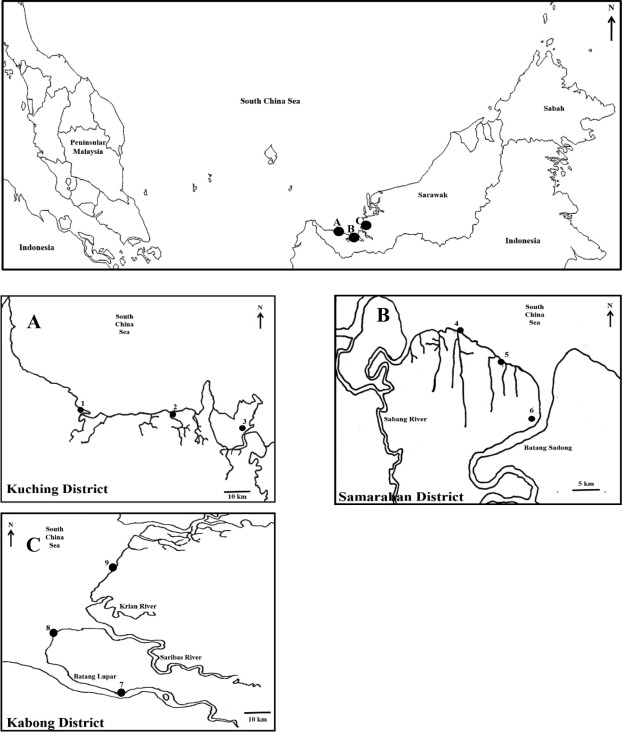 Distribution Of Two Species Of Asian Horseshoe Crabs At West Coast