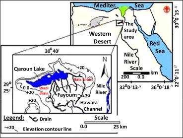 Evaluation Of Heavy Metal Content In Qaroun Lake ElFayoum Egypt - Map of fayoum egypt
