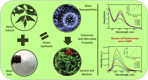 Controllable synthesis of silver nanoparticles using Neem