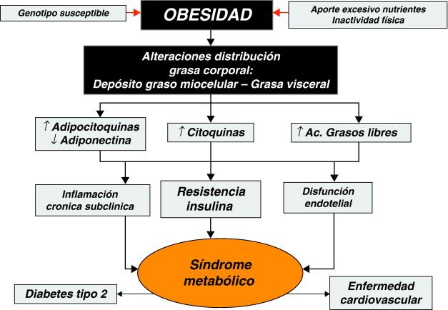 síndrome metabólico resistente a la insulina y pre diabetes