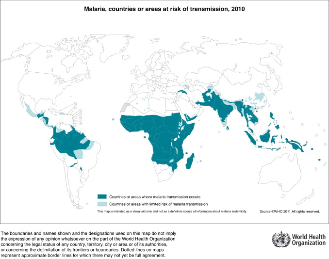 Malaria sintomas tratamiento y causas
