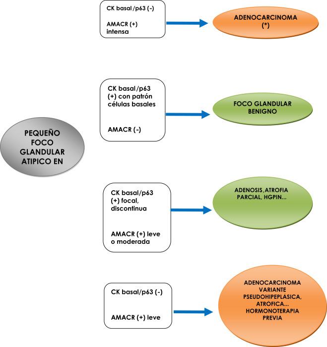 adenocarcinoma prostatico acinar cure 2