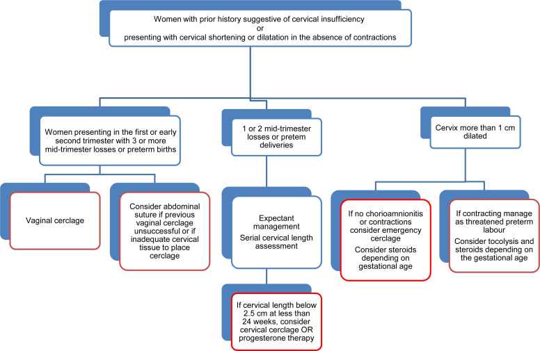 Cervical insufficiency and cervical cerclage sciencedirect recommendations ccuart Choice Image