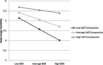 body image and self esteem studies