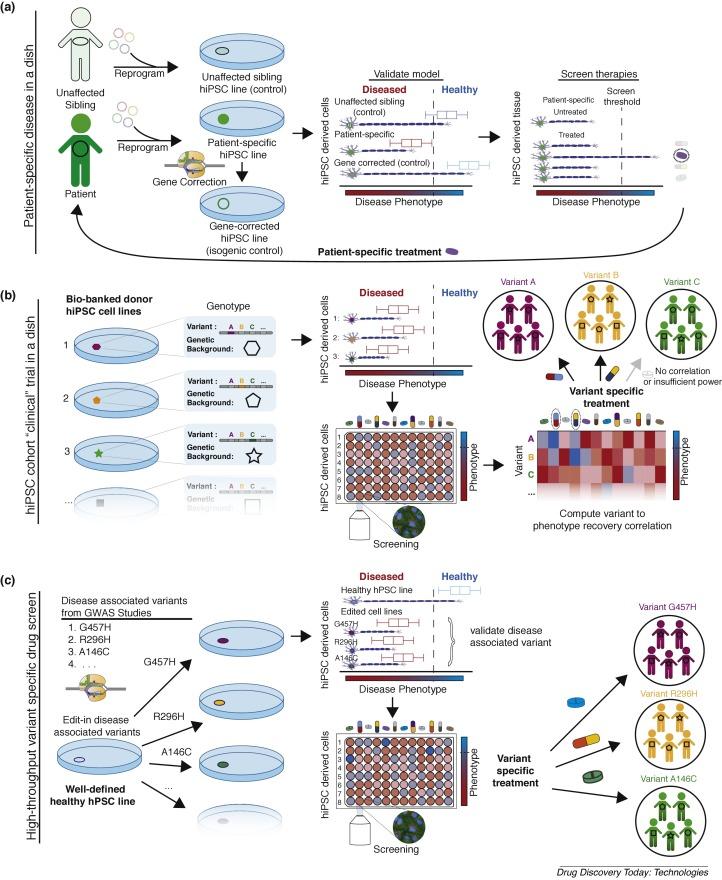 Developing precision medicine using scarless genome editing