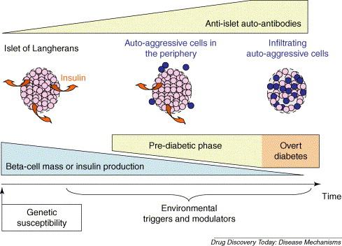 Adva t1a vs diabetes t1d