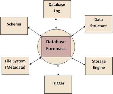 Ten years of critical review on database forensics research