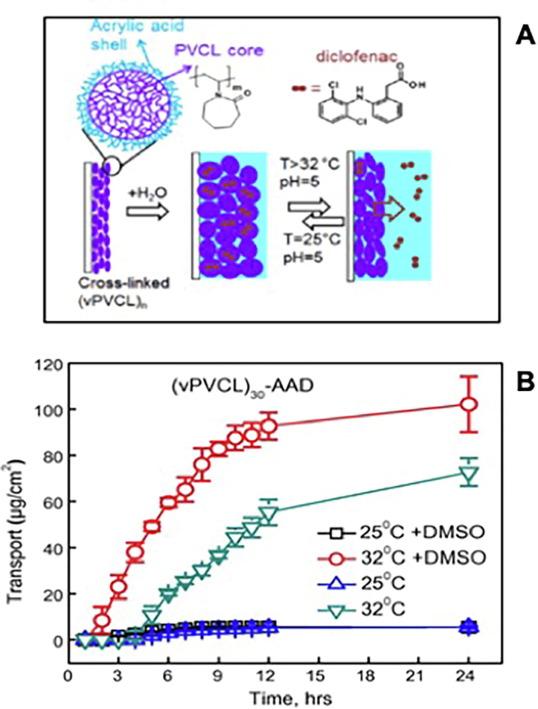 Stimulus-responsive polymeric nanogels as smart drug